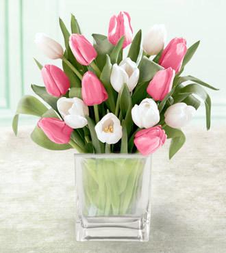 Tulip_vase